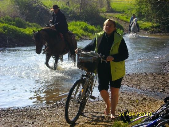 les vélos les pieds dans l'eau