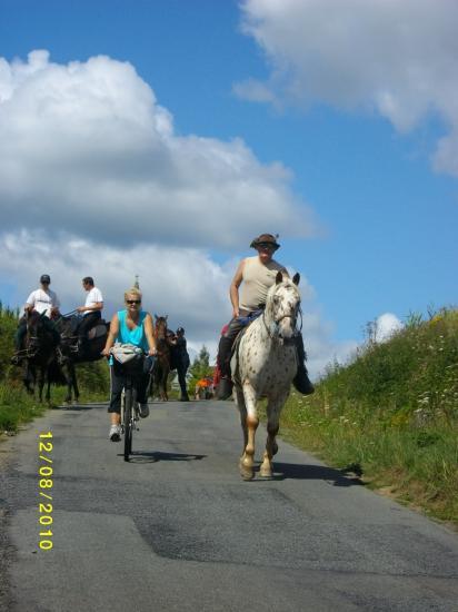 vélos/chevaux